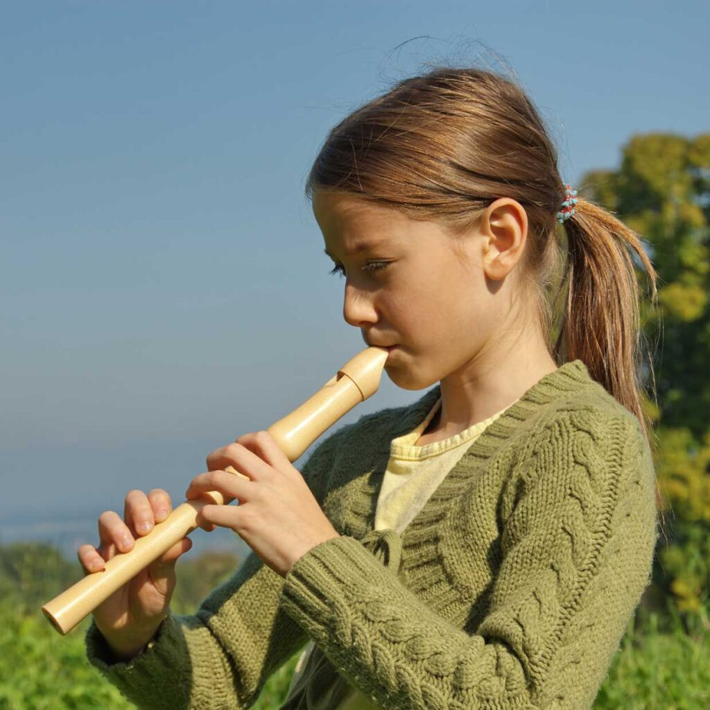 Learn To Play Recorder Orange County NY